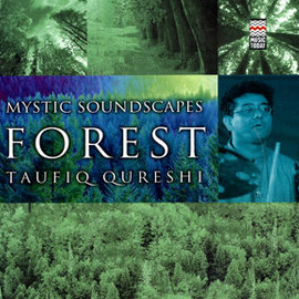Click on the image to see bigger version - Spiritual realms of a forest